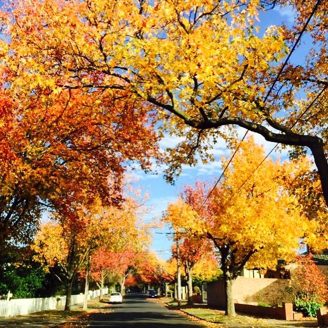 I love you Autumn!